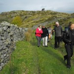 Nature's Work Guided easy trail walks wales
