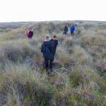 Sand dune ecosystems