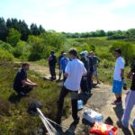 Heathland studies