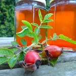 Rosehip syrup