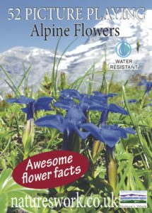 Alpine flowers playing cards