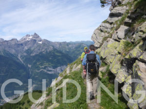 international trekking guide