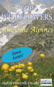 Top alpine trumps