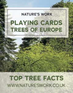 trees of Europe playing cards